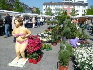 rodenkirchen 1